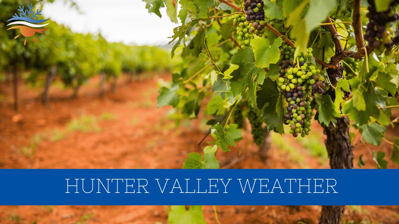 hunter valley weather